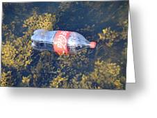 Coke Among The Seaweed Greeting Card