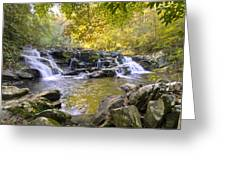 Coker Creek Falls Greeting Card
