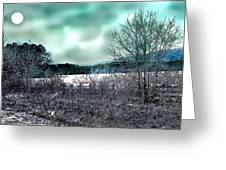 Cold Breezes Greeting Card