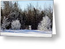 Cold Magic Greeting Card