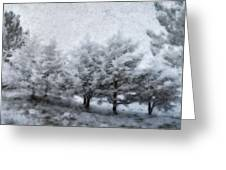Cold Spell Greeting Card