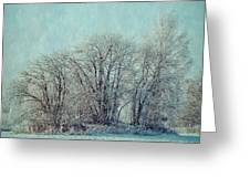 Cold Winter Day Greeting Card