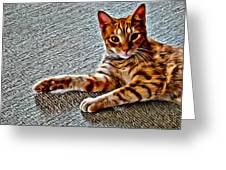 Cole Kitty Greeting Card