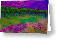 Colibri Acid 3 Greeting Card