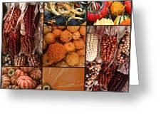 Collage - Corn - Pumpkins - Gourds - Elena Yakubovich Greeting Card