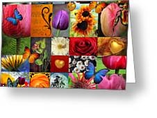 Collage Of Happiness  Greeting Card