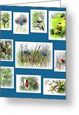 Collage Of Dauphin Island 22 Greeting Card