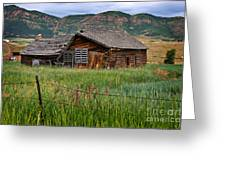 Collapsed Log House In Utah Greeting Card
