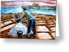 Collecting Salt At Xwejni Gozo Greeting Card