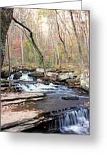 Collin's Creek Greeting Card