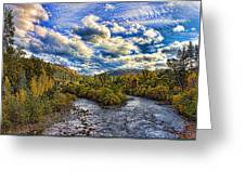 Coloma 4 Greeting Card by Mike Durant