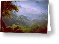 Colombia Forrest Greeting Card
