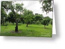Colonial Apple Orchard Greeting Card