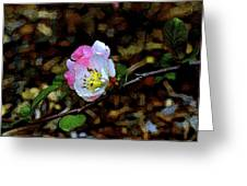 Color 131 Greeting Card