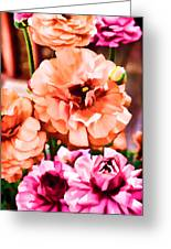 Color 145 Greeting Card