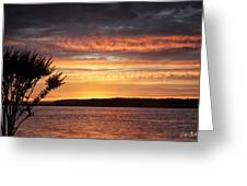 Color At Last Light Greeting Card