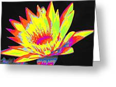 Color Blasted Greeting Card