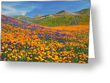 Color Filled Hills Greeting Card