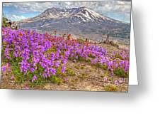 Color From Chaos - Mount St. Helens Greeting Card