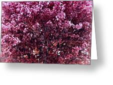 Color In The Tree 01 Greeting Card
