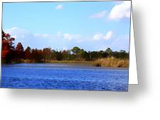 Color Of Fall Greeting Card