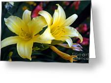 Color Of Lemon Greeting Card