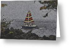 Color Of The Sails Greeting Card