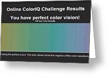 Color Test Melissa Bittinger Greeting Card