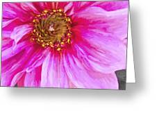 Color Wow Greeting Card