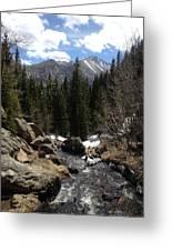 Colorado Wild Greeting Card