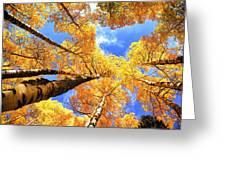 Colorado Autumn Sky Greeting Card