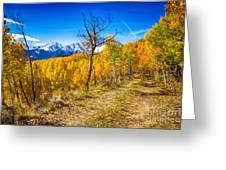 Colorado Backcountry Autumn View Greeting Card