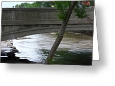 Colorado Bridge Greeting Card