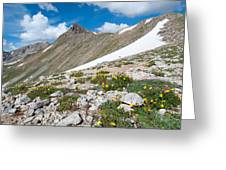 Colorado Elkhead Pass Greeting Card