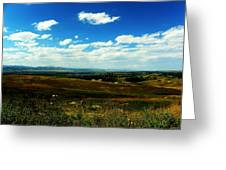 Colorado Fields Greeting Card by Christian Rooney