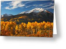 Colorado Gold Greeting Card by Darren  White