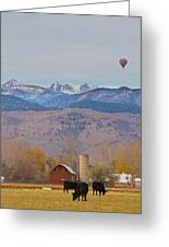 Colorado Hot Air Ballooning Greeting Card