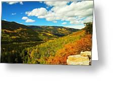 Colorado In Autumn Greeting Card