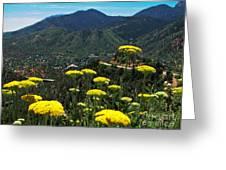 Colorado Rocky Mountain Greeting Card
