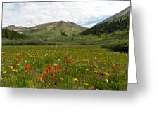 Colorado Meadow And Mountain Landscape Greeting Card
