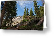 Colorado Mountain Hike Greeting Card by Michael J Bauer