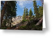 Colorado Mountain Hike Greeting Card