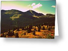 Colorado Number Eight Greeting Card