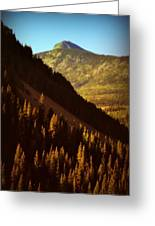 Colorado Number Seven Greeting Card