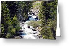 Colorado On My Mind Greeting Card by Donna Proctor