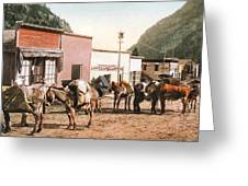 Colorado Pack Train Greeting Card