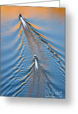 Colorado River Arizona Greeting Card