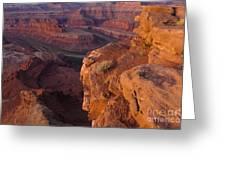 Colorado River At Dawn Greeting Card
