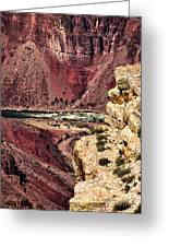 Colorado River. Grand Canyon Greeting Card