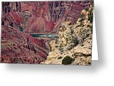 Colorado River In Grand Canyon Greeting Card